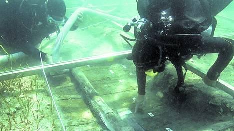 Adriatico-hallazgo-aguas-Umag-Croacia_CLAIMA20120526_0107_22.jpg