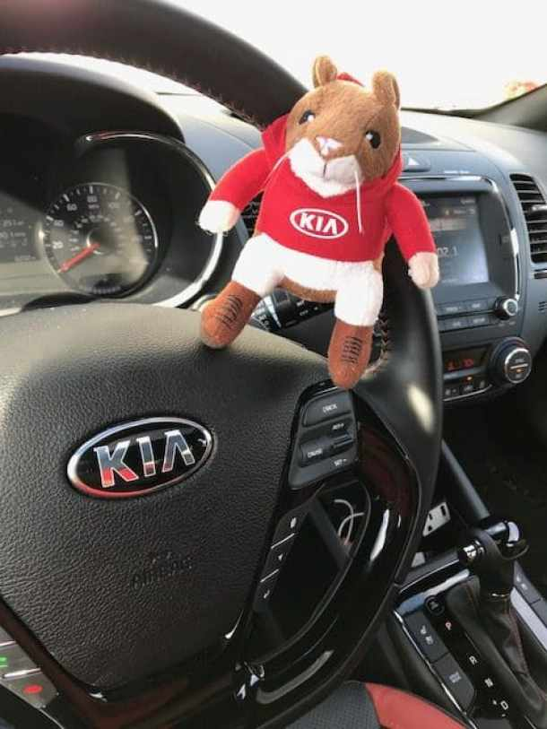 See Why I Have Fallen In Love With The Kia Forte