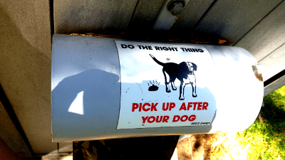 Pick up after your dog (picture of dog and dog poo)