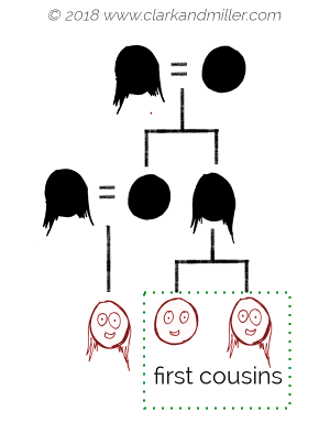 Family tree with first cousin