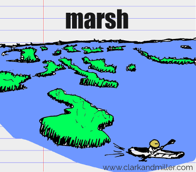 marsh drawing with text