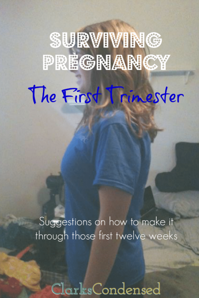 Surviving Pregnancy: The First Trimester Suggestions on how to make it through those first twelve weeks