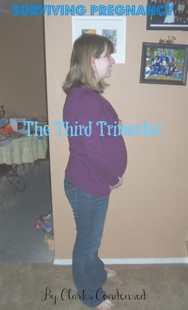 Surviving Pregnancy: The Third Trimester