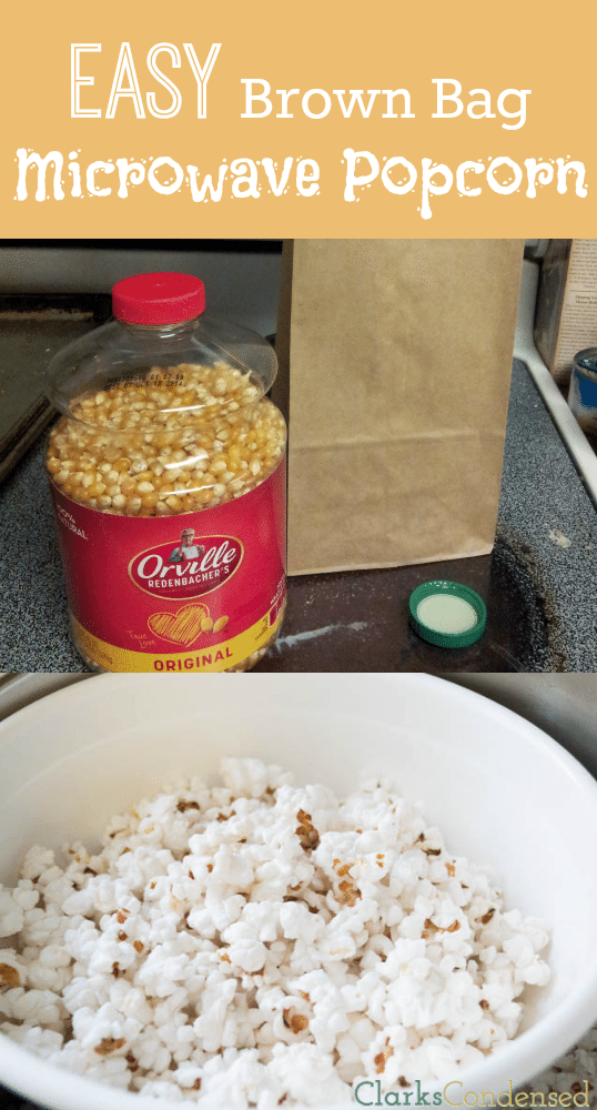 Brown Bag Popcorn is a much tastier and healthier alternative to store bought microwave popcorn. Perfect when topped with coconut oil, butter, or parmesan cheese!