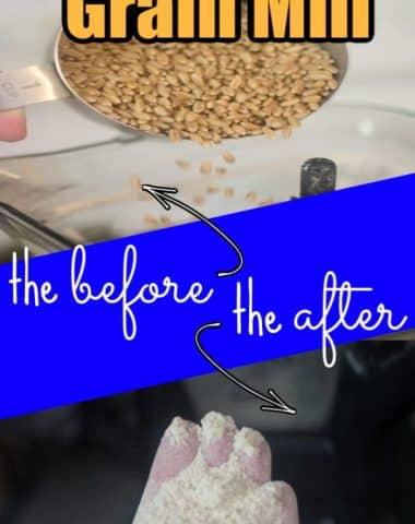 Blender and Grain