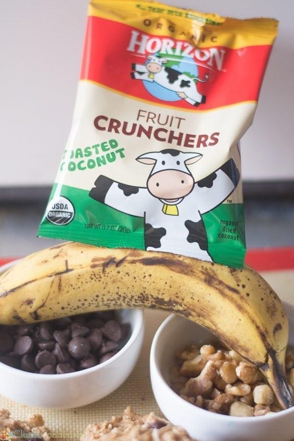 Horizon Fruit Crunchers Toasted Coconut