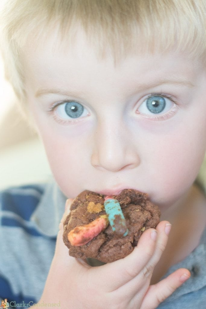 dirt-and-worm-pudding-cookies (3 of 4)