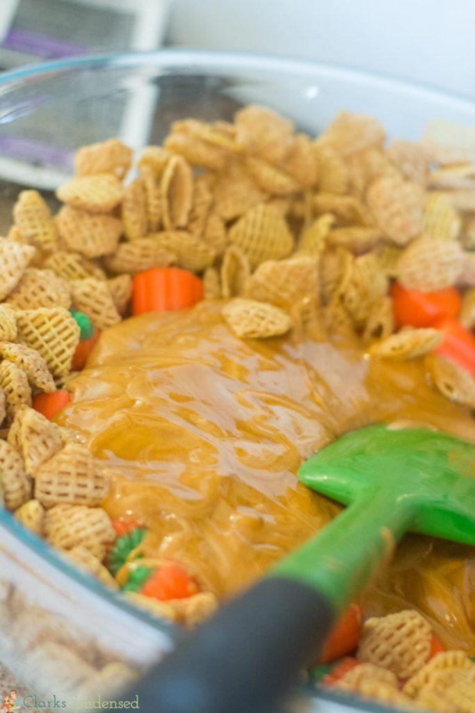 pumpkin-butterscotch-puppy-chow (5 of 11)