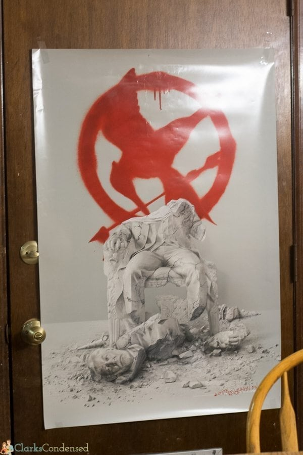 hunger games party ideas (16 of 16)