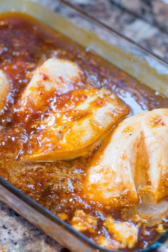apricot-chicken (1 of 10)