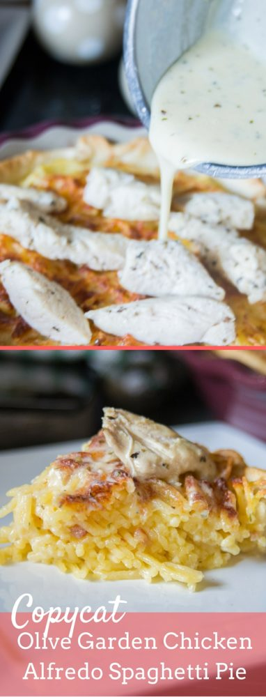 A delicious copycat Olive garden spaghetti pie featuring grilled chicken and alfredo sauce! via @clarkscondensed