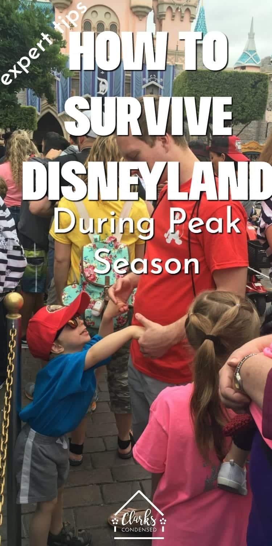 Disneyland / Disneyland Tips / Tips for Visiting Disneyland / Disneyland During the Summer / Best times to visit disneyland / disneyland advice / disneyland secrets / disneyland california / disneyland | tips, tricks & secrets via @clarkscondensed