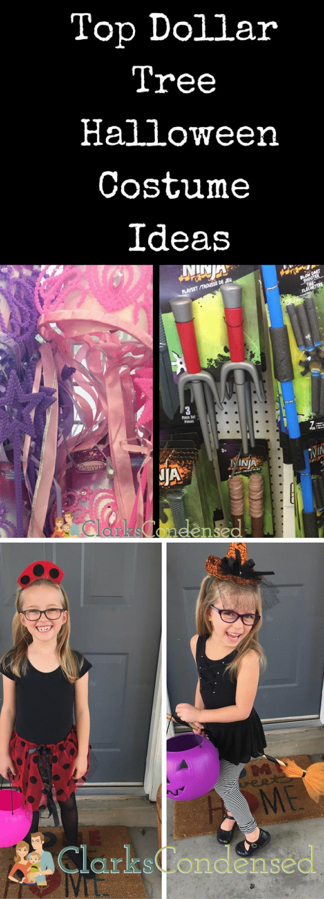 Dollar Tree Halloween Costumes / DIY Halloween Costume Ideas / Easy Halloween Costume Ideas / Halloween / #Halloween #costumeideas #costumesforkids