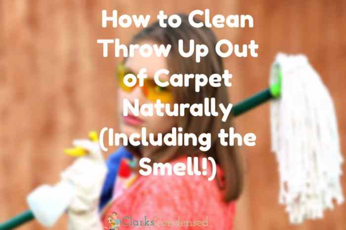 clean up vomit from carpet / clean vomit smell out of carpet / clean throw up out of carpet