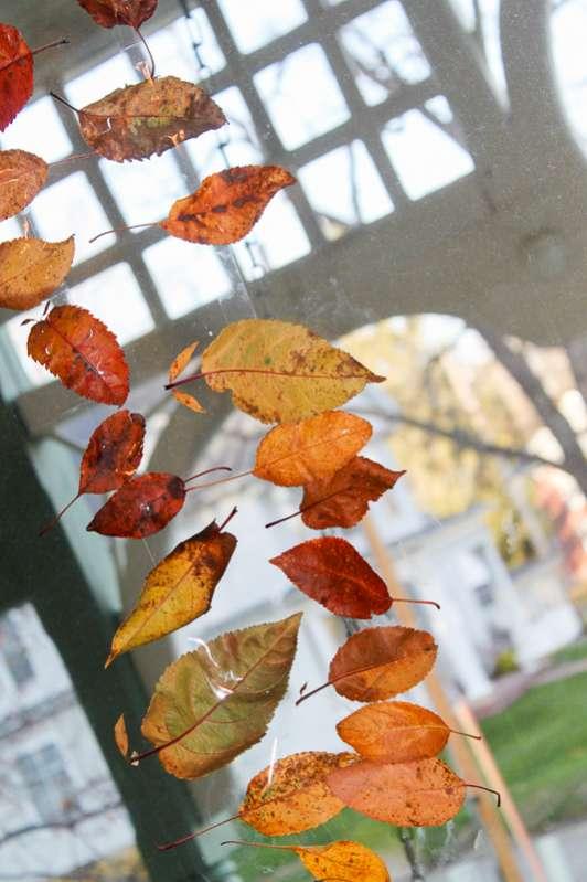 leaves hanging on string