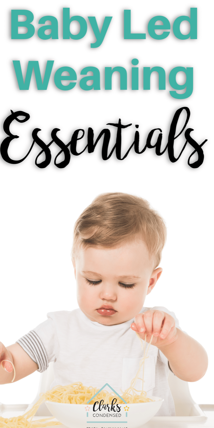 Interested in baby led weaning? Here are the best baby led weaning essentials for the modern parent. #babyledweaning #baby #solids via @clarkscondensed