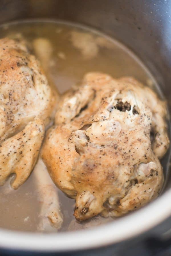 instant pot cornish game hen