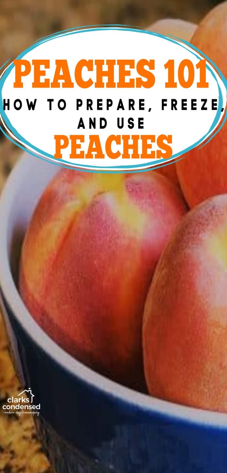 Not sure what kind of peaches to buy? Wondering how to easily peel your peaches? Need some delicious recipes? This post will help you learn all you need to know! via @clarkscondensed