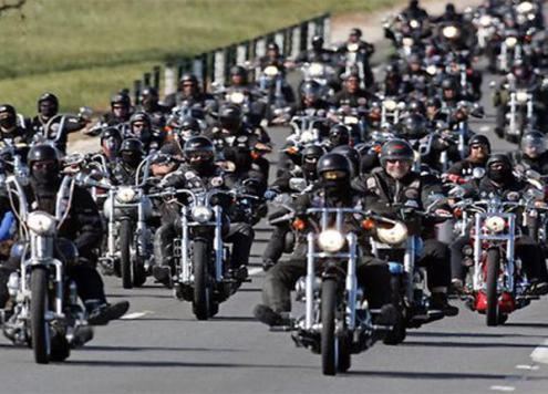 Biker Gangs