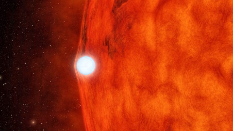 This artist's concept depicts a dense, dead star called a white dwarf crossing in front of a small, red star. The white dwarf's gravity is so great it bends and magnifies light from the red star. (Image credit: NASA/JPL-Caltech)