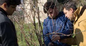studenti agrario piedimonte
