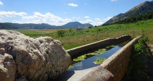Abbeveratoio lago matese 1