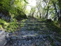 La mulattiera da Santa Croce al Monte Raspato
