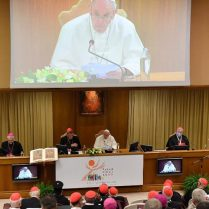 papa francesco sinodo