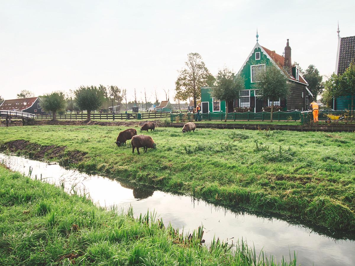 amsterdam3-21