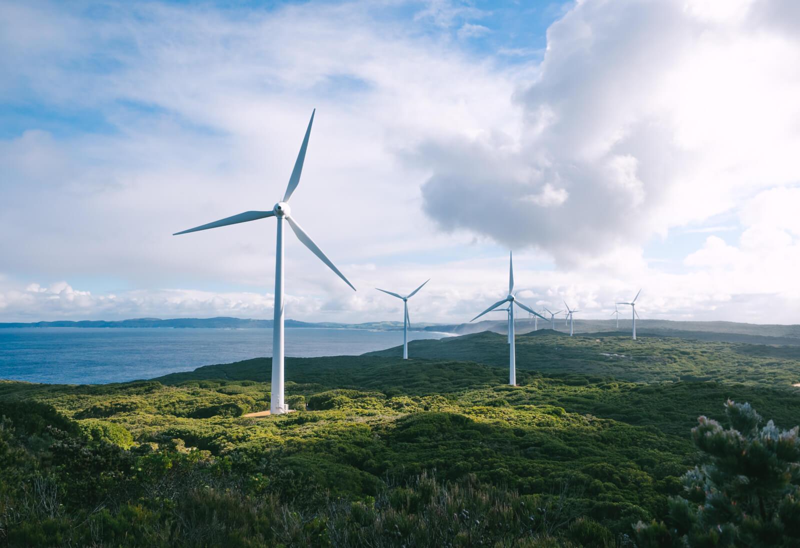 Wind Farm, Albany