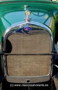 Calandra protectora del radiador.