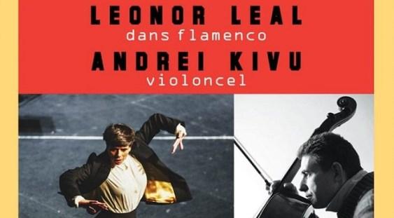 Dans flamenco și violoncel @ TNB