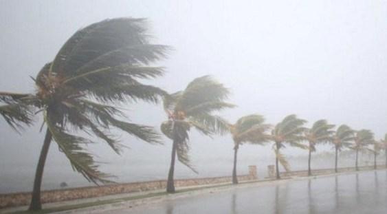 Ploi şi vânt puternic în întreaga ţară, până la 11:00