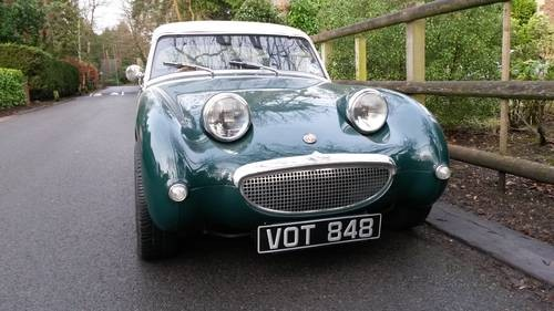 For Sale 1959 Austin Healey Frogeye Sprite Fast Road Modified     For