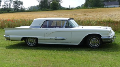 Ford Thunderbird 1959 (4)