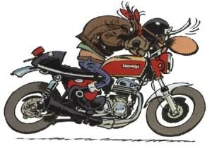 Honda SOHC4 Motorcycle Manuals