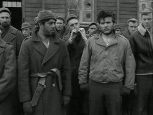stalag 17 1953 10