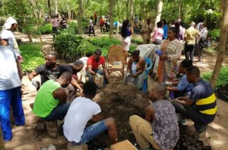 Greening Ghana Initiative Is On Course – Forestry Commission