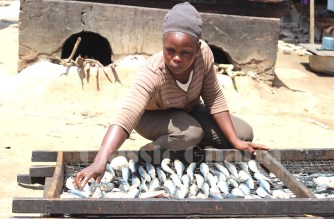 USAID Supports Women Fish Processors To Improve Hygienic Processing