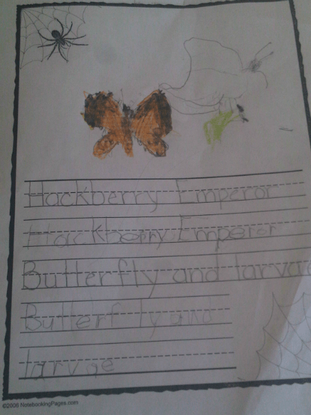 LP-Hackberry-Butterfly-Notebooking-Page