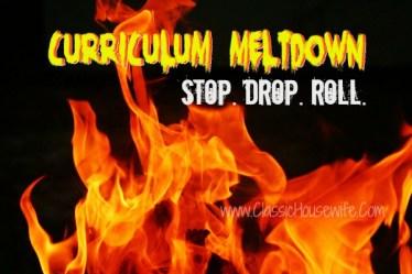 Curriculum Meltdown