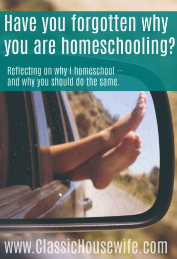 Reflecting on Why I Homeschool, and Why You Should Do The Same