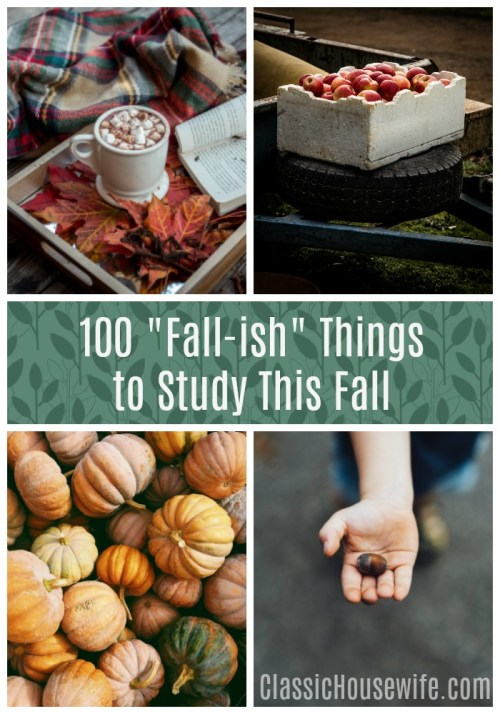 100 Things for Fall Study