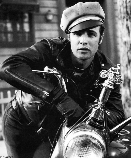 Image result for marlon brando motorcycle