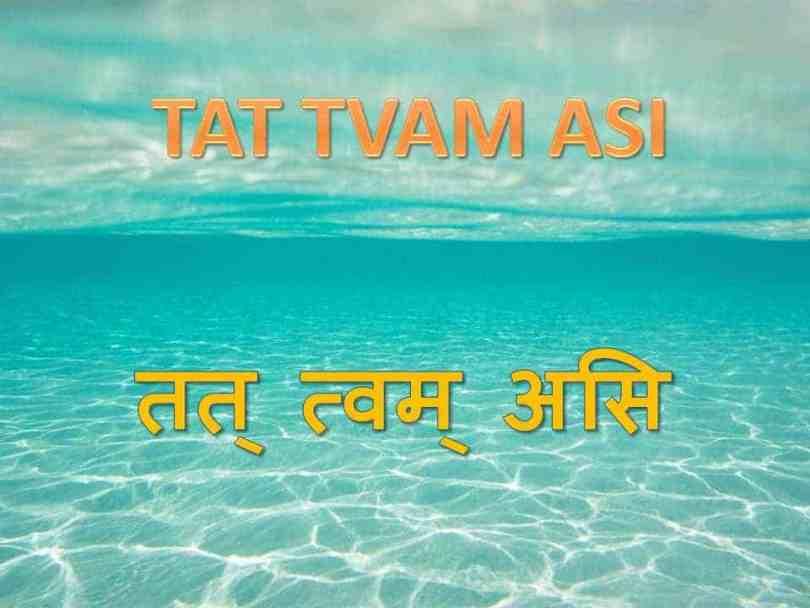 Tat Tvam Asi: That Thou Art