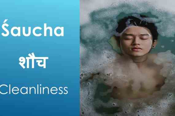 Saucha Image