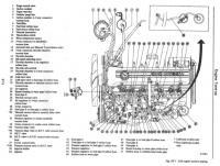 Vacuum Hose Schematic