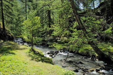 Ruisseau du Clou au Monal