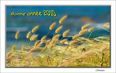 voeux-2010-2