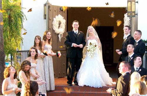 na porta de uma igreja os noivos apreciam o vôo das borboletas que foram soltas por uma coluna de mulheres e homens que estão na escadaria da porta da igreja.